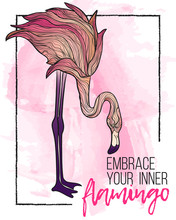 Vector Hand Draw Illustration Of Colorful Flamingo With Motivation Quotes Embrace Your Inner Flamingo On Watercolor Texture Background And Chalk Frame