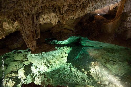 Interior of a cenote (underground river sinkhole) located in Hacienda Sotuta de Peon, Tecoh, Yucatan, Mexico.