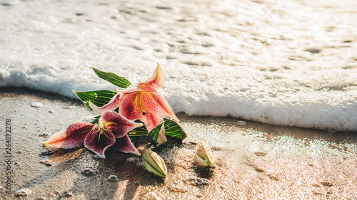 Fotografía Stargazer lily in the ocean on the beach with foamy water at sunset