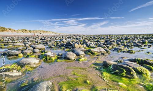 Foto auf AluDibond Nordeuropa Ynyslas National Nature Reserve