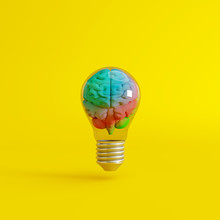 Colorful Brain With A Lightbul...