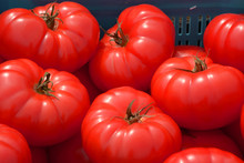 Red Beef Steak Tomatoes For Sale Macro Shot, Big Red Beef Tomatoes On A Market In Bavaria