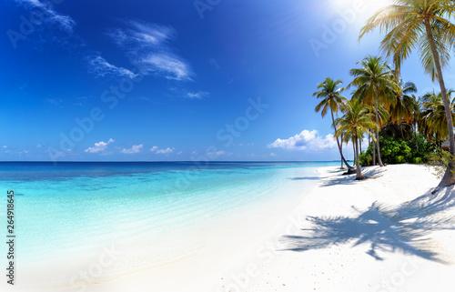 Panorama eines tropischen Strandes auf den Malediven mit Palmen, türkisem Ozean Fototapeta