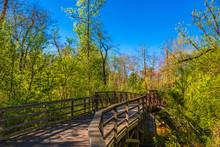 A Bridge On A Woodland Walking...
