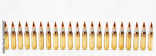 Canvastavla Hunting cartridges of caliber. 308 Win