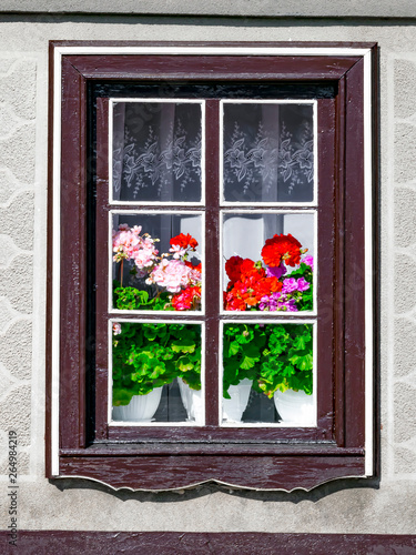A window outside the house with blooming geranium flowers in an old European hou фототапет