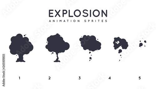 Valokuva  Explosion Storyboard Sprite Set for Animation. Vector Set.