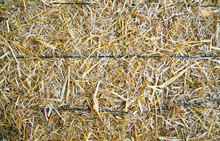 Dried Hay Bale