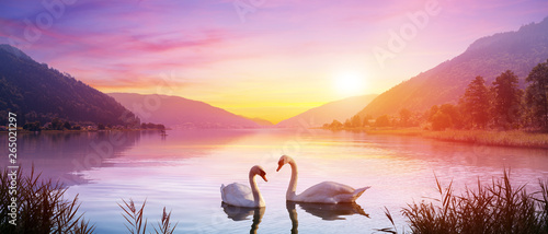 Stampa su Tela Swans Over Lake At Sunrise - Calm And Romance