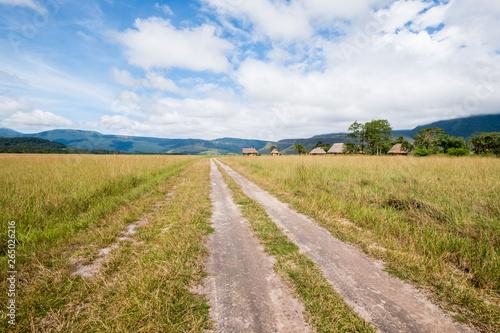 Landing strip in the Yutaje indigenous village , Amazonas State - Venezuela