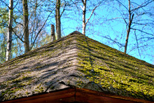The Roof Of The Old Barn Overgrown...