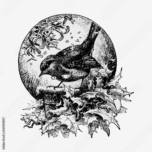 Winter bird in vintage style Canvas Print