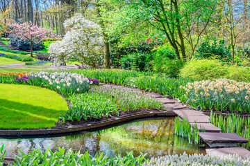 Fototapeta Ogrody Spring blossom nature. Keukenhof park of flowers and tulips in the Netherlands. Beautiful outdoor scenery in Holland