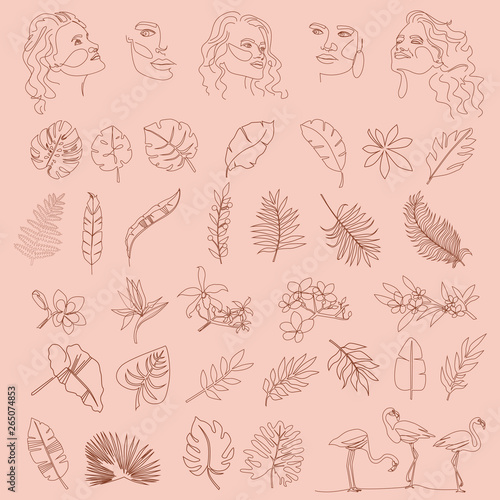 Set of abstract tropical elements, shapes and girl portrait in one line style. Illustration in minimalistic style. Editable vector illustration Wall mural