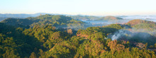 Panoramic View In The Early Morning Over The Rain Forest