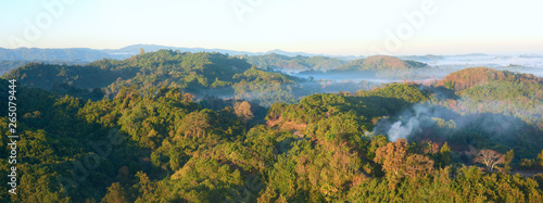 Photo panoramic view in the early morning over the rain forest