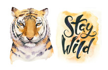 Watercolor Tropical Tiger Animal Isolated Illustration, Wild Cat Axotic Animals. Plant Monstera, Lianas Jungle Artwork. Fasion Print Design.