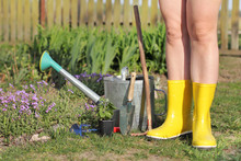 Gardener In Yellow Boots And G...