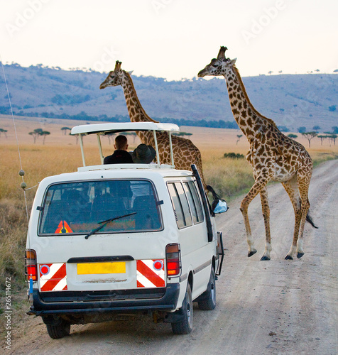 Fotografía Tourists in the car watching the giraffes in Kenya