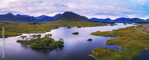 Poster Purper Aerial panorama of the Pine Trees Island in the Derryclare Lake