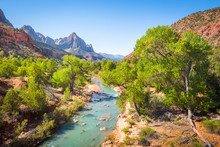Zion National Park Scenery Wit...
