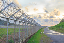 Wire Mesh Steel With Green Grass Background In Phuket Thailand