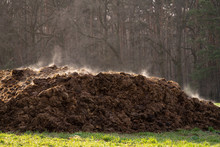 A Pile Of Manure On An Agricul...