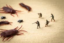 害虫退治のイメージ