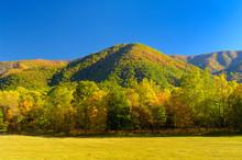 Cades Cove In Autumn, Smoky Mountains, TN, USA