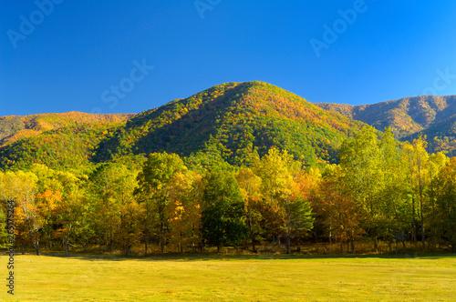 Tablou Canvas Cades Cove in autumn, Smoky Mountains, TN, USA