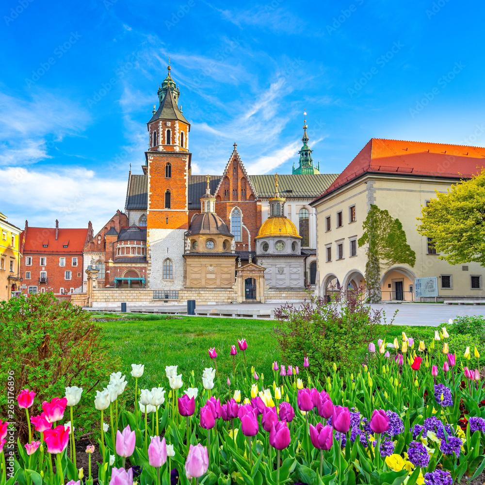 Fototapety, obrazy: The city of Krakow, Poland, Wawel Castle