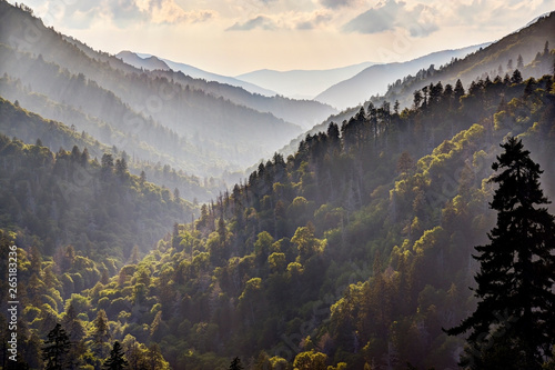 God Beams in Great Smoky Mountains at Morton's Overlook Wallpaper Mural