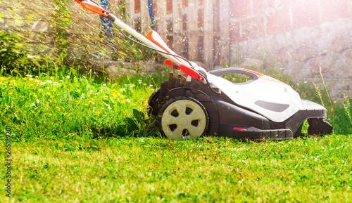 Fototapeta Electricity powered lawnmower cutting fresh grass on lawn obraz