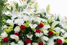 Greeting Card. Red And White Flowers On A White Background, Copy Space, Place For Text. White And Green Chrysanthemum, Red Rose, Lily, Gypsоphila And Calla.