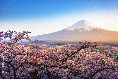 Photo Stands Trees Fujiyoshida, Japan Beautiful viewed from behind red Chureito Pagoda at sunset, japan in the spring with cherry blossoms