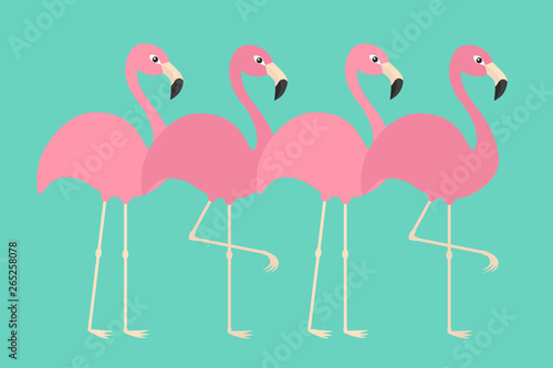 Pink flamingo set line. Exotic tropical bird. Zoo animal collection. Cute cartoon character. Decoration element. Flat design. Green background. Isolated.