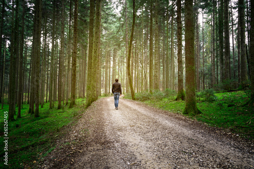 Fotografie, Obraz Man walks alone on forest road with mossy ground.