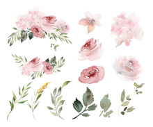 Set Of Vegetable Watercolor Elements For Creating Greeting Cards With Flowers.