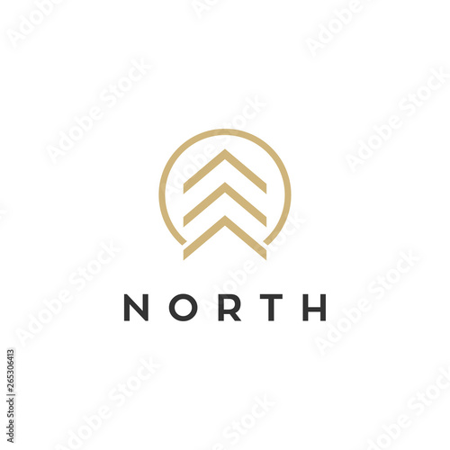 north vector logo design Slika na platnu