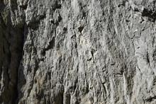 Grey Cliff Texture