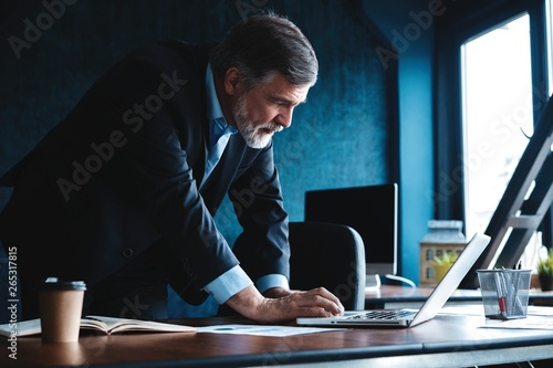 Elegant businessman analyzing data in office Canvas Print