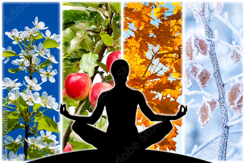 Female yoga figure silhouette against collage of four pictures representing each season: spring, summer, autumn and winter Canvas Print