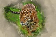 Watercolour Painting Of Stunning Jaguar Panthera Onca Prowling Through Long Grass