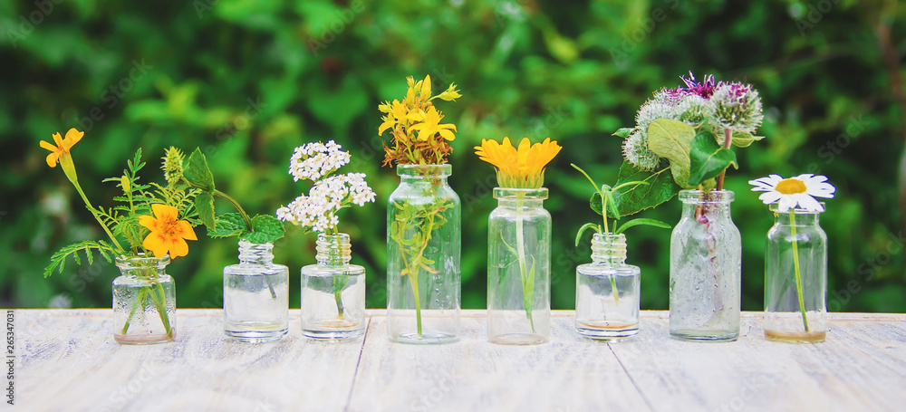 Fototapety, obrazy: extracts of herbs in small bottles. Selective focus.
