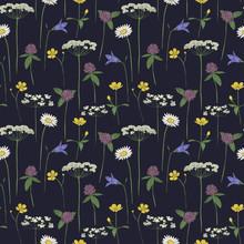 Seamless Pattern Midsummer Flowers, Vector