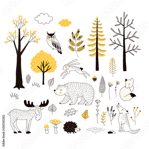 Canvas Prints Owls cartoon Autumn forest flat hand drawn illustrations set. Woody flora and fauna design elements. Woodland animals and trees clip-arts. Isolated scandinavian decorative nature wildlife creatures and plants.
