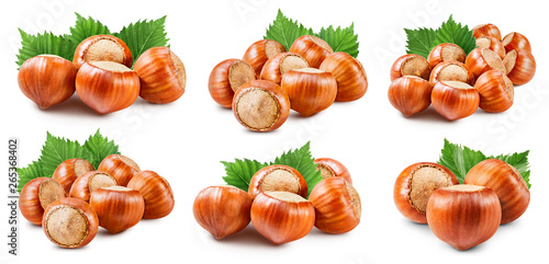 Poster de jardin Nature Hazelnuts isolated on white