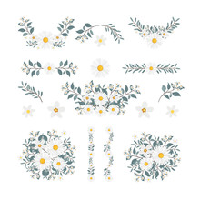 Isolated Flower Elements With ...