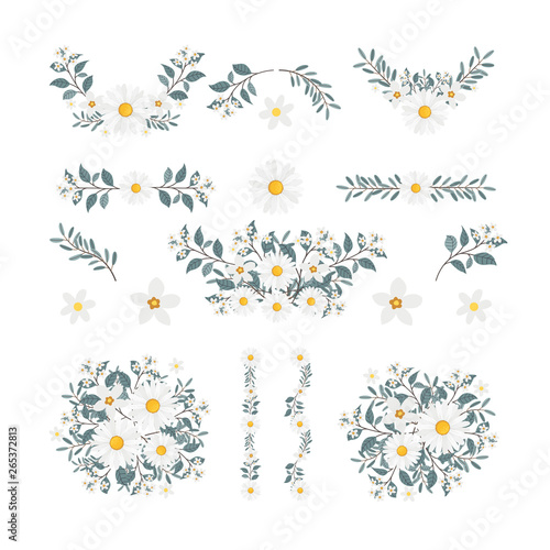 Leinwand Poster Isolated flower elements with branch and leaves