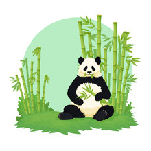 Giant Panda Sitting And Eating With Bamboo Forest In The Background. Black And White Bear Holding And Chewing Bamboo Branches And Leaves. Endangered Species. Vector Illustration.